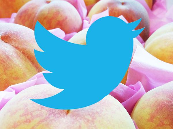 Twitterの新機能を使った「い・ろ・は・す もも」プロモーション アイキャッチ画像