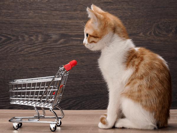 ショッパー・マーケティング『購入者=消費者』とは限らない! アイキャッチ画像